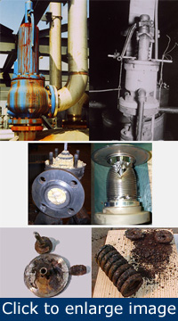 Figure 1. Various failure modes. Clockwise from top left: plugged drain, run beyond failure, ruptured bellows, corroded springs and washers, component corrosion, clogged with product. The as-found condition can be an aid in troubleshooting both application and installation problems.